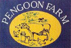 A link to the website for Pengoon Farm near Helston in Cornwall - a touring caravan site, selling free range eggs and genuine Cornish clotted cream